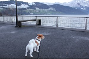 Luzern järven rannalla